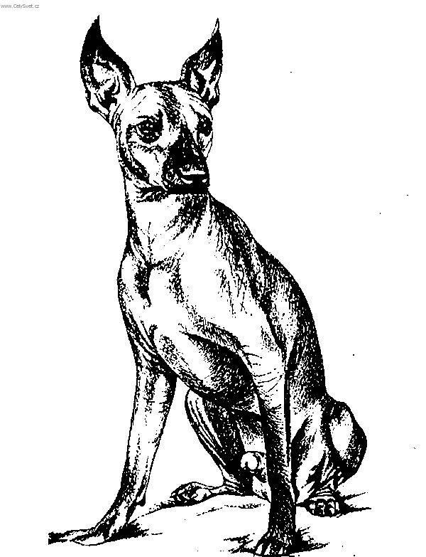 Dog 01 together with 503457 additionally 510666045218270980 together with Coloriages Fast Food Restauration Rapide A Colorier in addition Ariel. on dog coloring pages