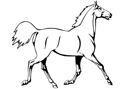 Coloring Sheets  Girls on Free Coloring Pages For Boys And Girls  Animals  Horses  Zebras